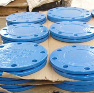 Epoxy Coated Blind Flange