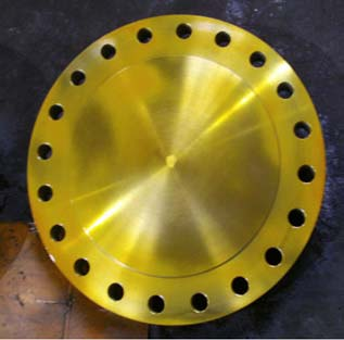 A182 Golden Blind Flange, RTJ, API 600